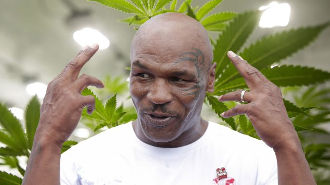 Mike Tyson Preparing to Revolutionize Marijuana Industry, Breaks Ground on 'Tyson Ranch'