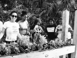 (L-R) AKAs Joanna Adorne, Alicia Faison, Dale Bell, Candance Ford and Tonya Brown at work.