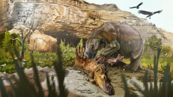 A reconstruction of the South American giant ground sloth Mylodon. (Jorge Blanco/Zenger News)